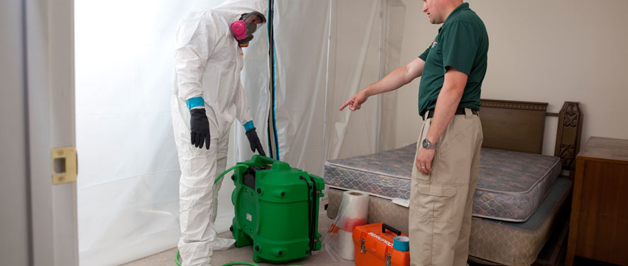 Manchester, NH mold removal process